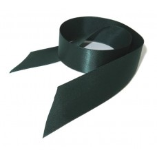 School Ribbon Green 2.5 cm